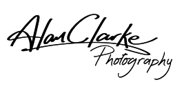 County Durham Photographer, Alan Clarke Photography, Weddings Portraits Pets Baby